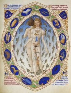 Les Très Riches Heures - Homo signorum